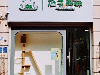 爪子森林宠物生活馆