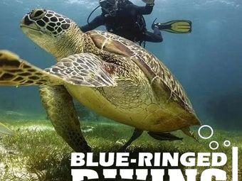 蓝环潜水俱乐部
