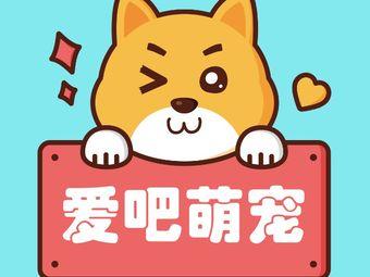 爱吧宠物生活馆(大经街店)
