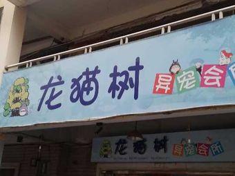 龙猫树异宠会所(新时代广场店)
