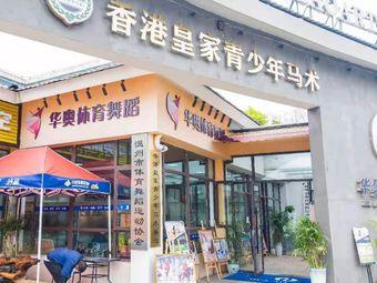 香港皇家青少年马术