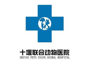 联合动物医院(六堰总院)