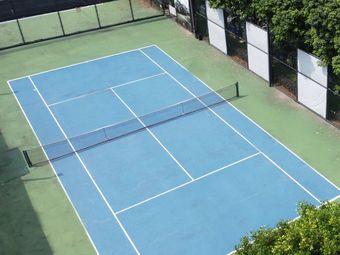 拓辰青少儿网球(万科金域蓝湾网球场)