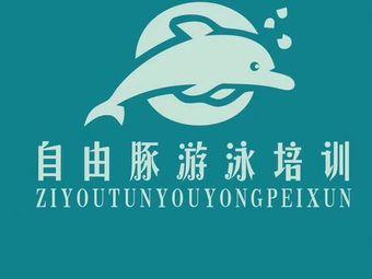 自由豚游泳培训(中茂海悦店)