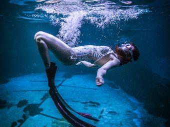 领航潜水俱乐部