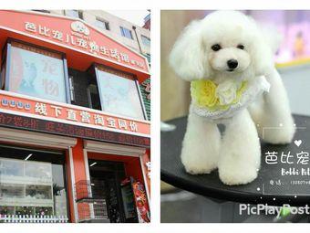 芭比宠儿宠物生活馆(奉天街店)