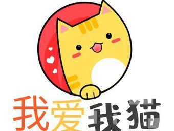 我爱我猫名猫馆