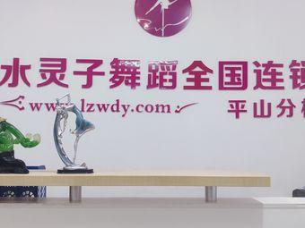 国际灵子舞蹈(平山分校)