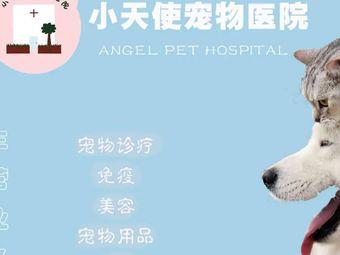 无为市天使宠物医院