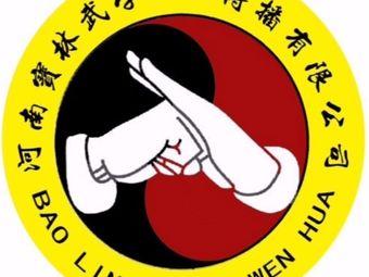 宝林武学(固始体艺学院)