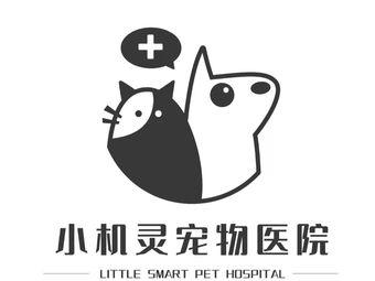 小机灵宠物医院