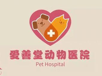 爱善堂动物医院