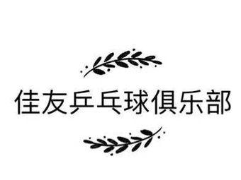 佳友乒乓球俱乐部(沙区友好店)