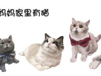 朱妈妈家里有猫·猫舍