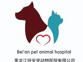 倍安宠动物医院·果戈里猫友好医院
