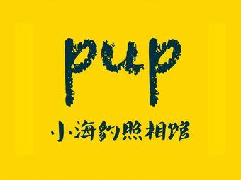 小海豹照相馆 ·PUP PHOTO(经济开发区万达金街店)