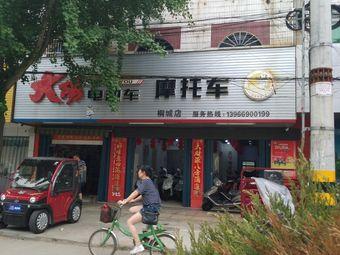 大阳电动车摩托车(桐城店)