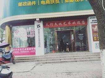 德安县天行文化艺术培训学校