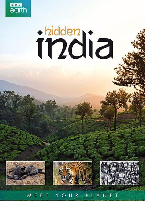隐秘的印度全集 2015.HD720P 高清迅雷下载