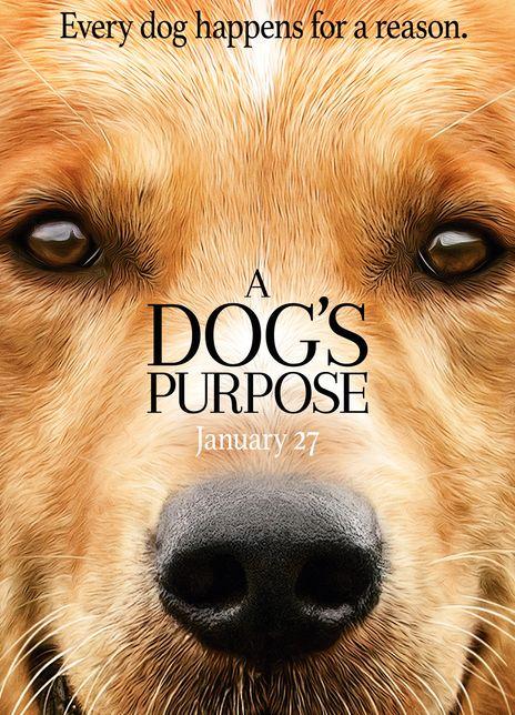 一条狗的使命海报封面