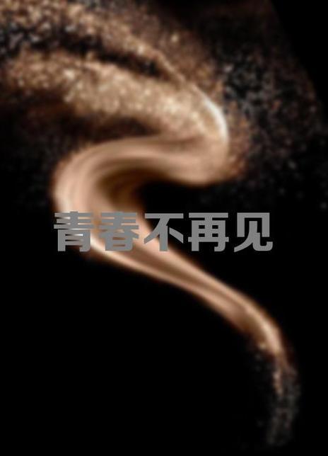 青春不再見(2017)