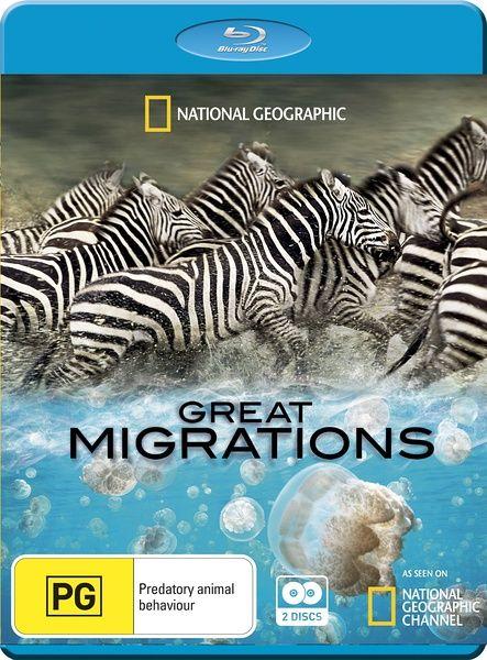 2010豆瓣9.4高分美国纪录片《大迁徙》BD1080P 英语中字