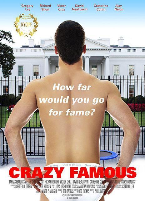 疯狂成名记海报封面