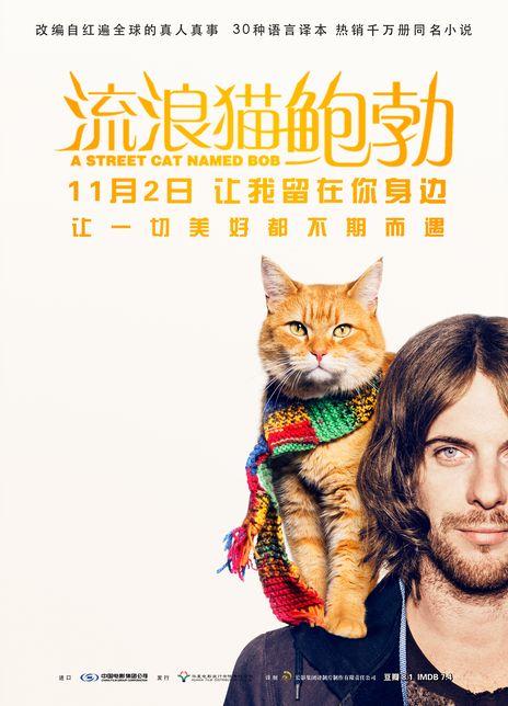 2016高分喜剧传记《流浪猫鲍勃》BD1080P.国英双语.中英双字