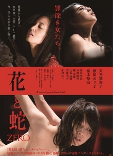 2004-2014日本剧情《花与蛇1-4合集》HD720P高清下载
