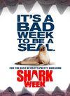 Marco Stengel 鲨鱼周