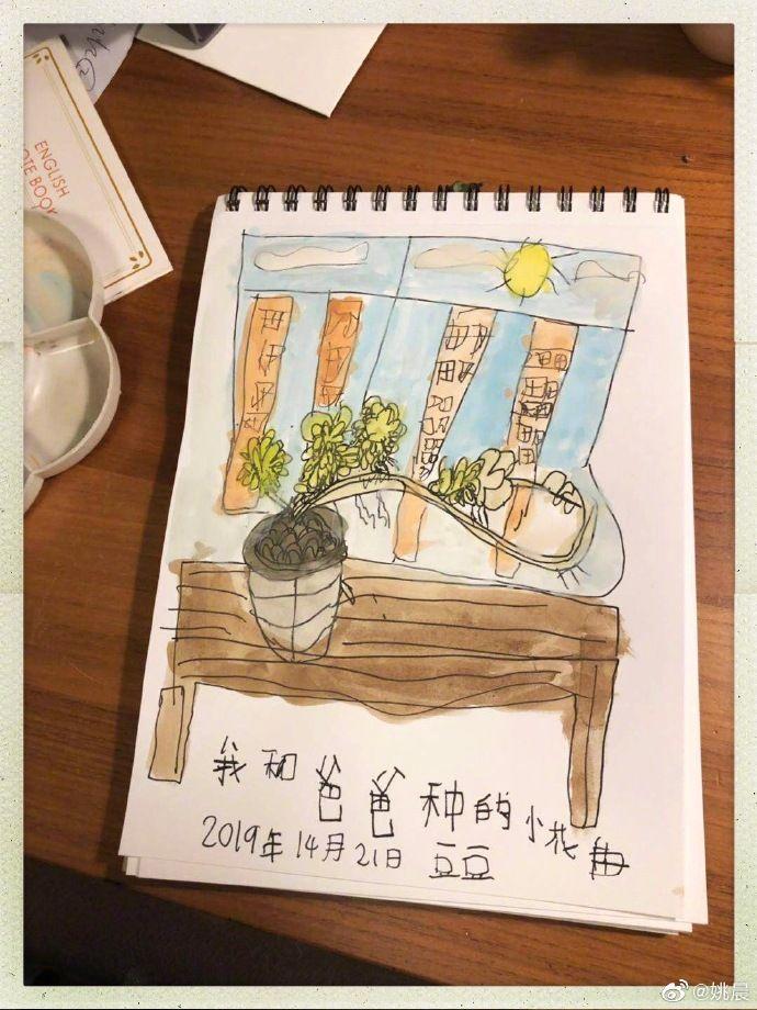 姚晨微博晒6岁儿子画作,实力表演亲妈打脸  第4张