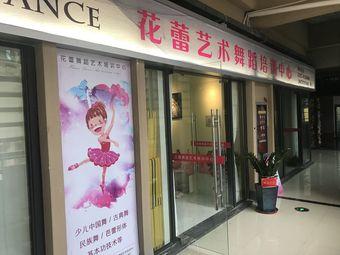 花蕾舞蹈艺术培训中心