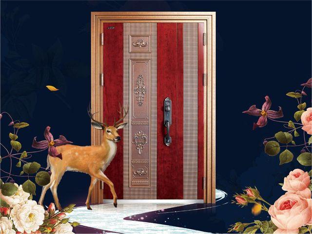 王力安全门的图片