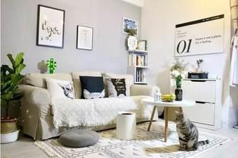 40平米小户型宜家风格客厅装修案例