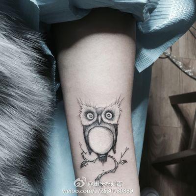 可爱猫头鹰纹身款式图