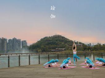 FancY Pink圣霏舞蹈瑜伽培训中心(花果园店)